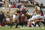 20110515慶應戦